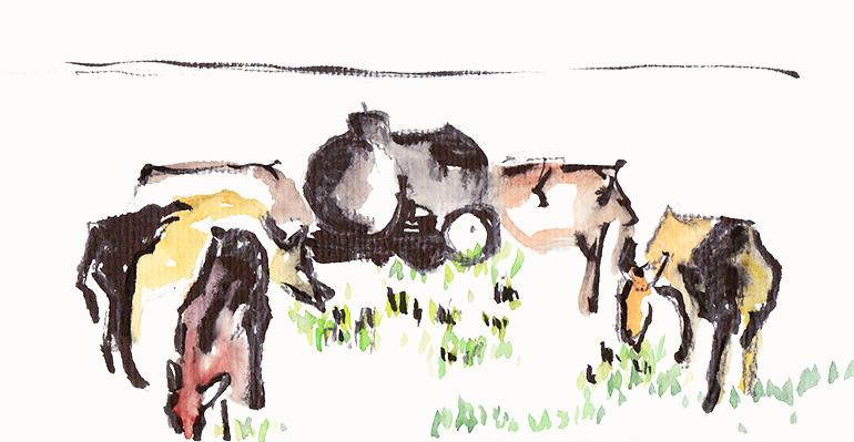 Erdmaedchen - Urban Sketch Vaduz Liechtenstein Cows